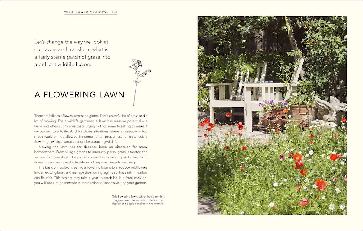 Wild Your Garden page preview: A Flowering Lawn